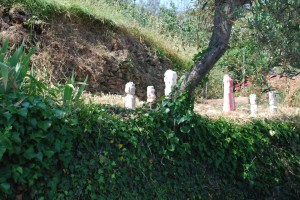 filippo biagioli insieme di statue rituali vendone