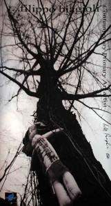 filippo biagioli autografo cartolina poster analphabetic art  1