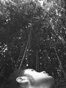 filippo biagioli bamboo podere la fornace serravalle pistoiese