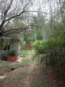 podere la fornace serravalle pistoiese strada sentiero verso giardino arte tribale filippo biagioli