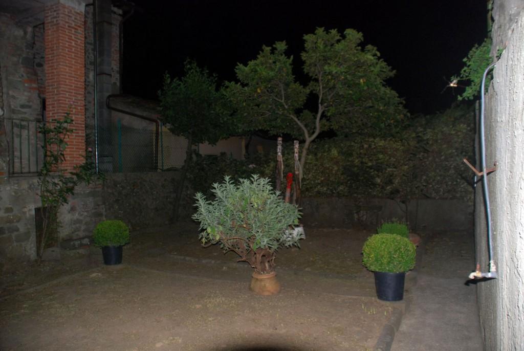 Filippo Biagioli giardino notturna Per Giorgio arte internazionale a Massa pt