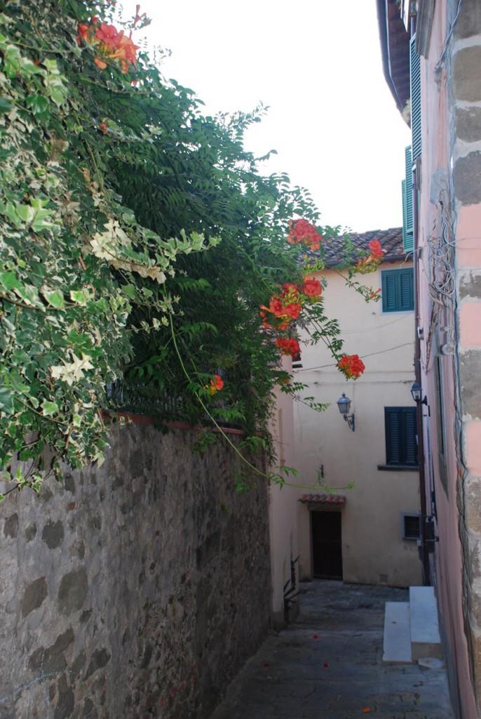 Fiori prima del giardino Per Giorgio arte internazionale a Massa pt