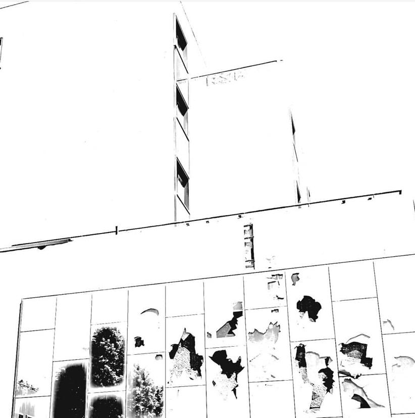 Guggenheim Venezia Josef Albers Filippo Biagioli 1