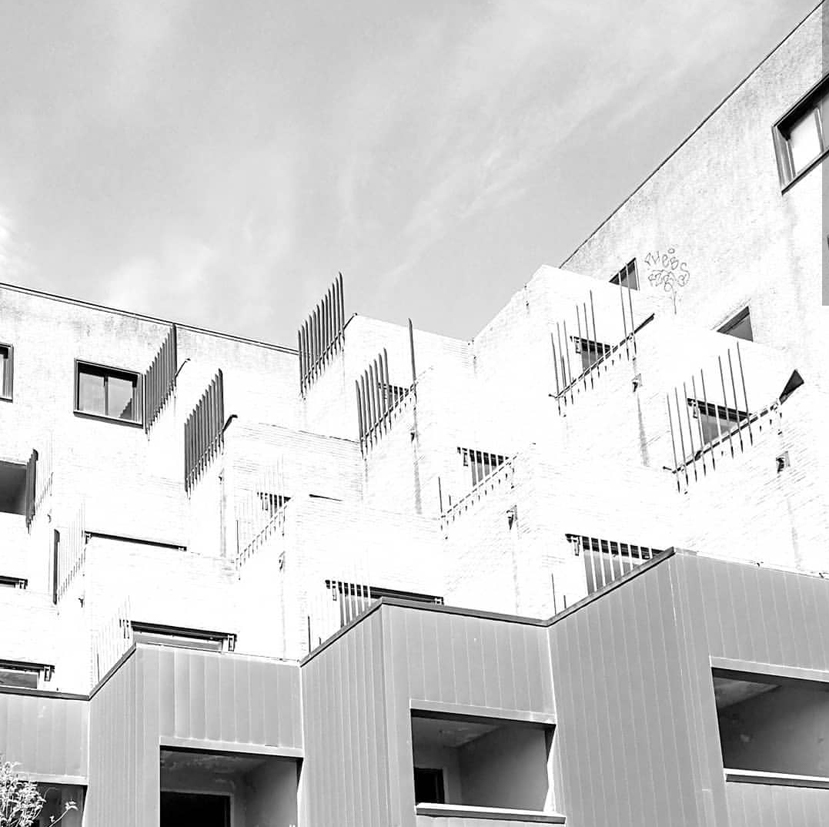 Guggenheim Venezia Josef Albers Filippo Biagioli 2