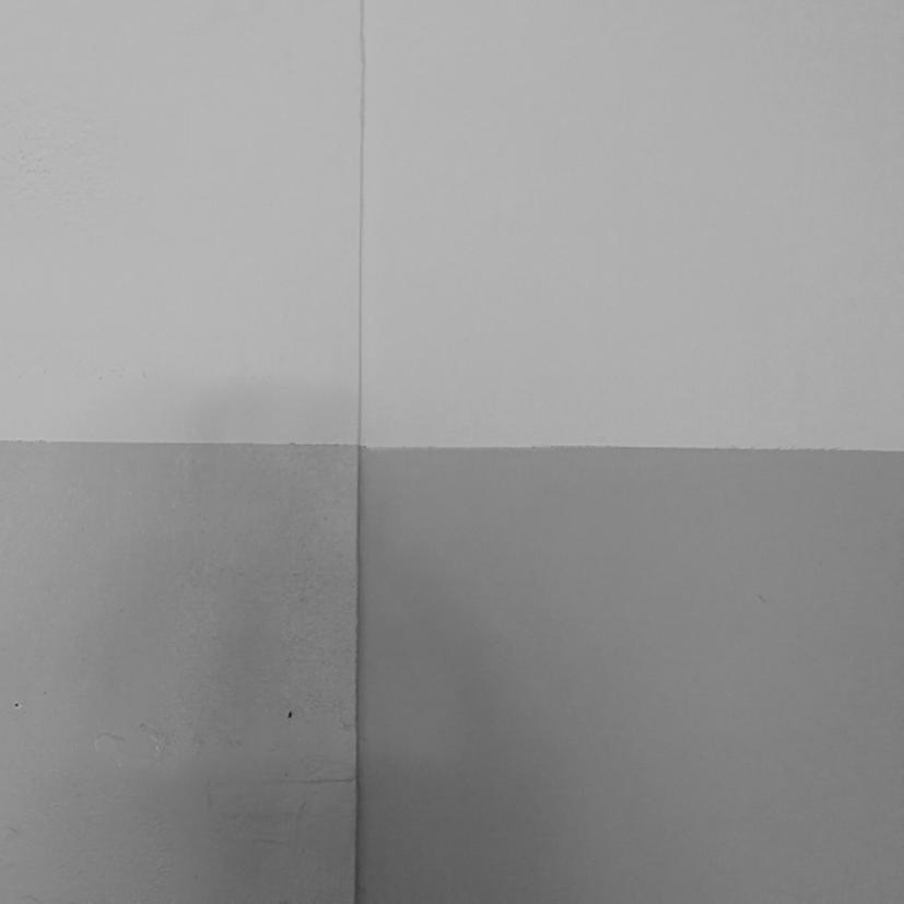Guggenheim Venezia Josef Albers Filippo Biagioli 6