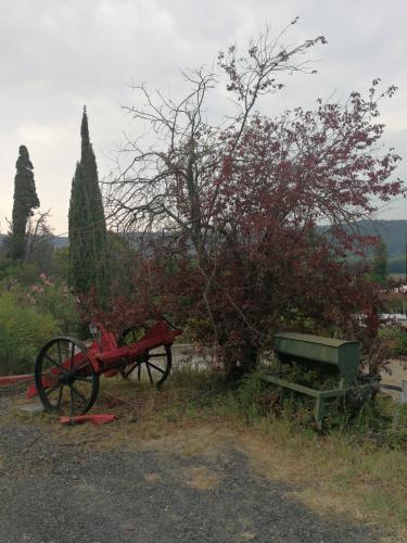 Giardino San Martino Riparbella