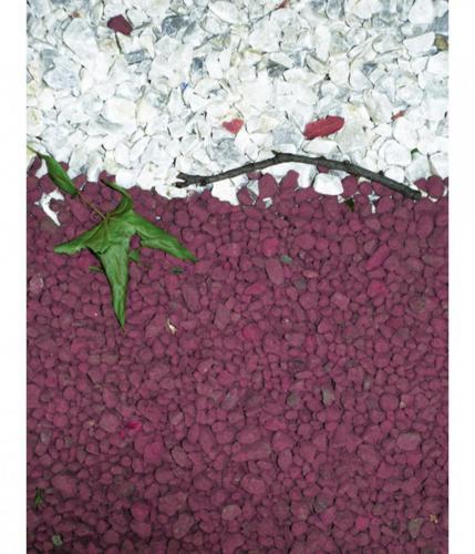 Fotografia graffitata #foto #graffiti #arte #arr #color