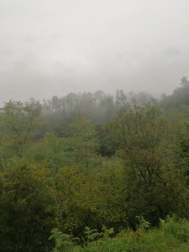 Prima del temporale natura